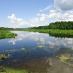5105807-Bashakill_Wildlife_Management_Area_Wurtsboro
