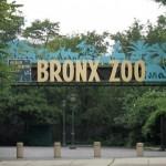 Bronx_Zoo_Entrance