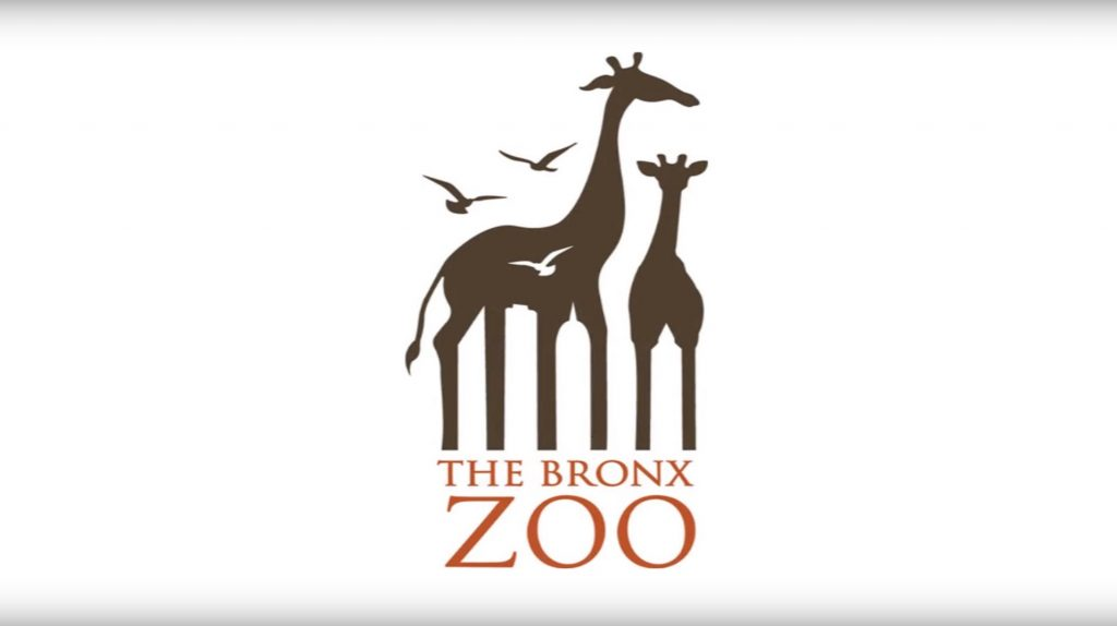Week 3 Assignments  |Bronx Zoo Logo